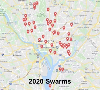 locations of swarms managed by the DCBA Swarm Squad in 2020