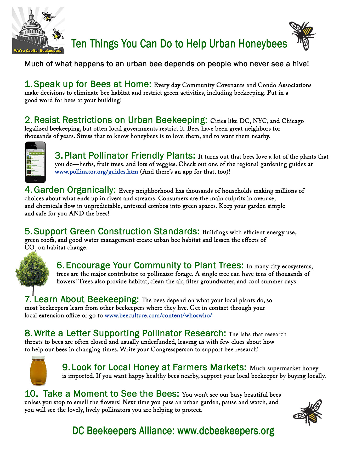 Write A Check Ten Things You Can Do To Help Urban Honeybees Dc Beekeepers  Alliance Howtosellyourpuppiesonline